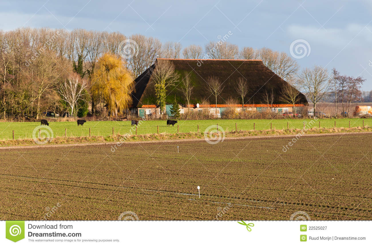 Dutch farm in winter colors royalty free stock photography Farm house netherlands