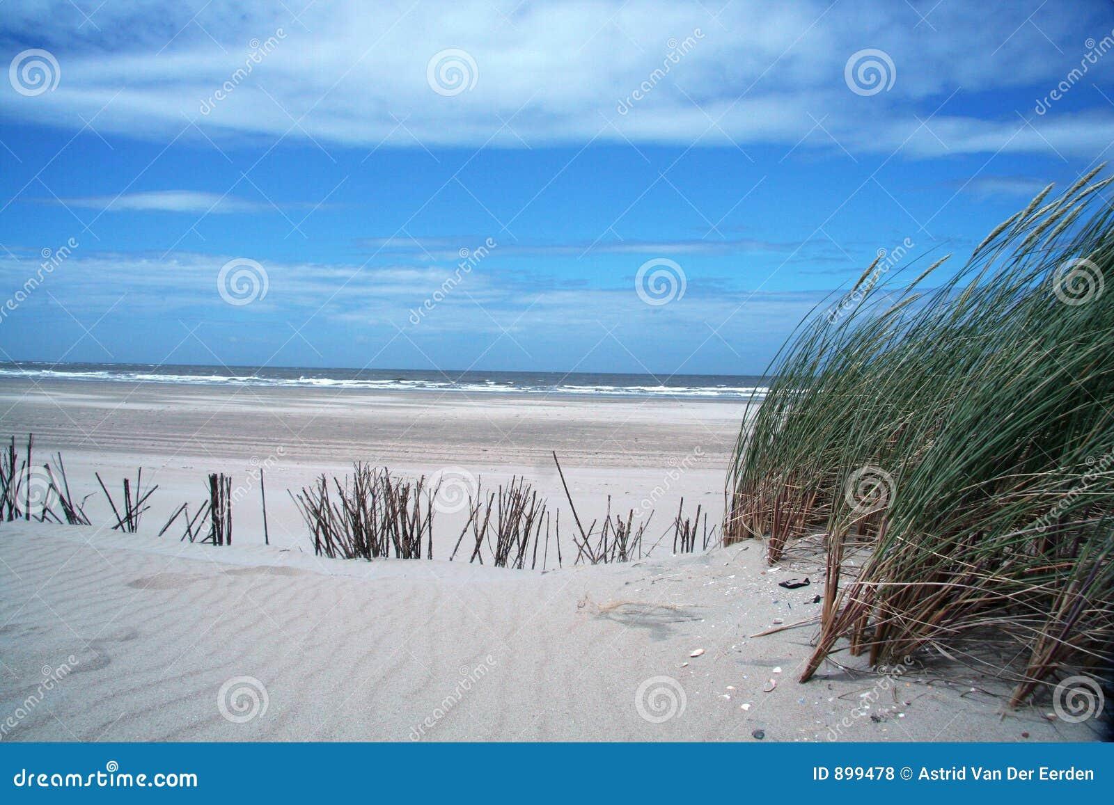 Dutch krajobrazu