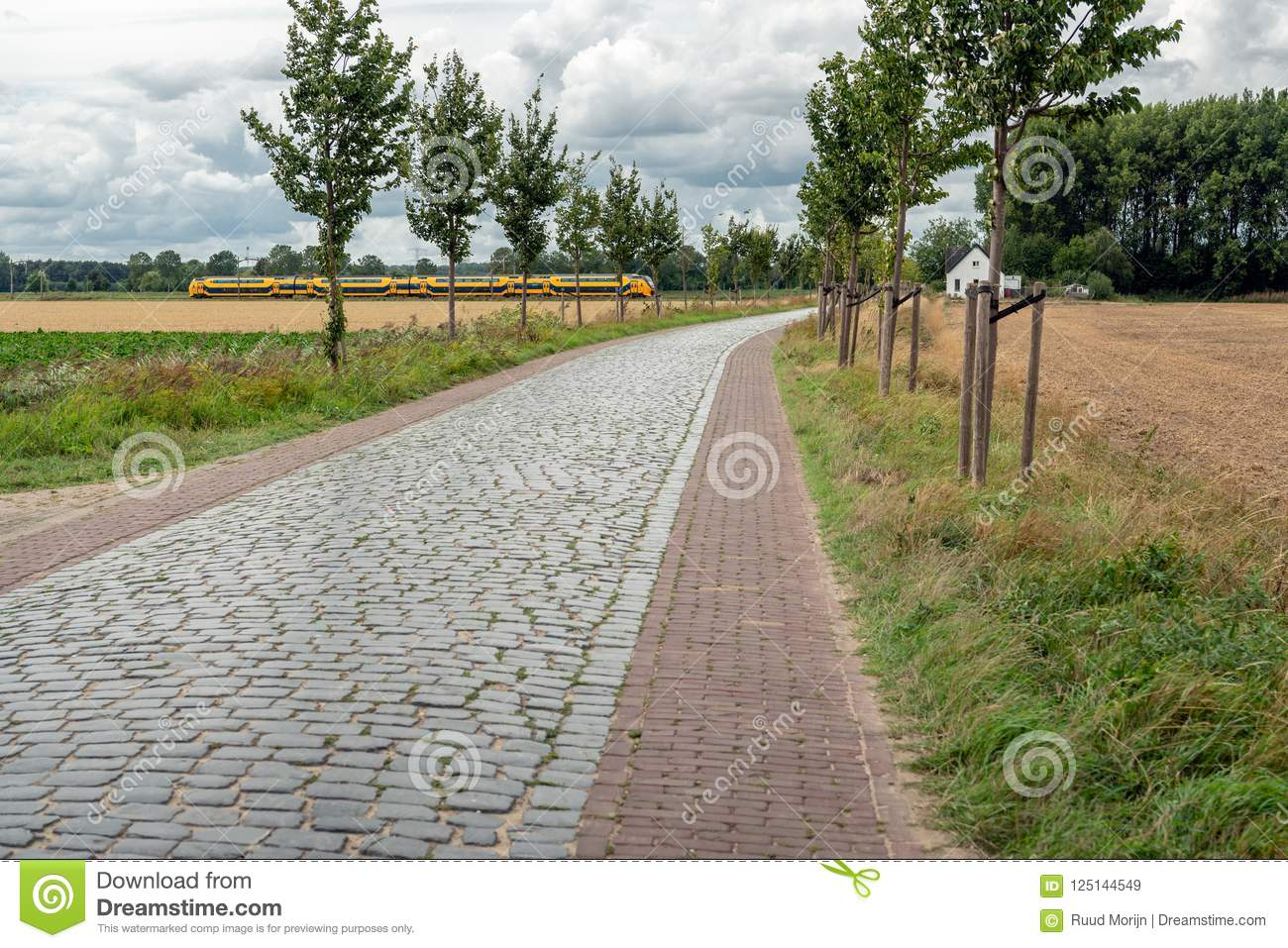 dutch landscape with a yellow train in the background editorial