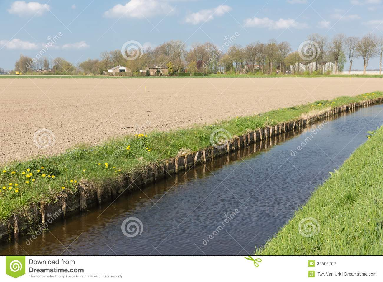 Dutch rural landscape with ditch and farmland