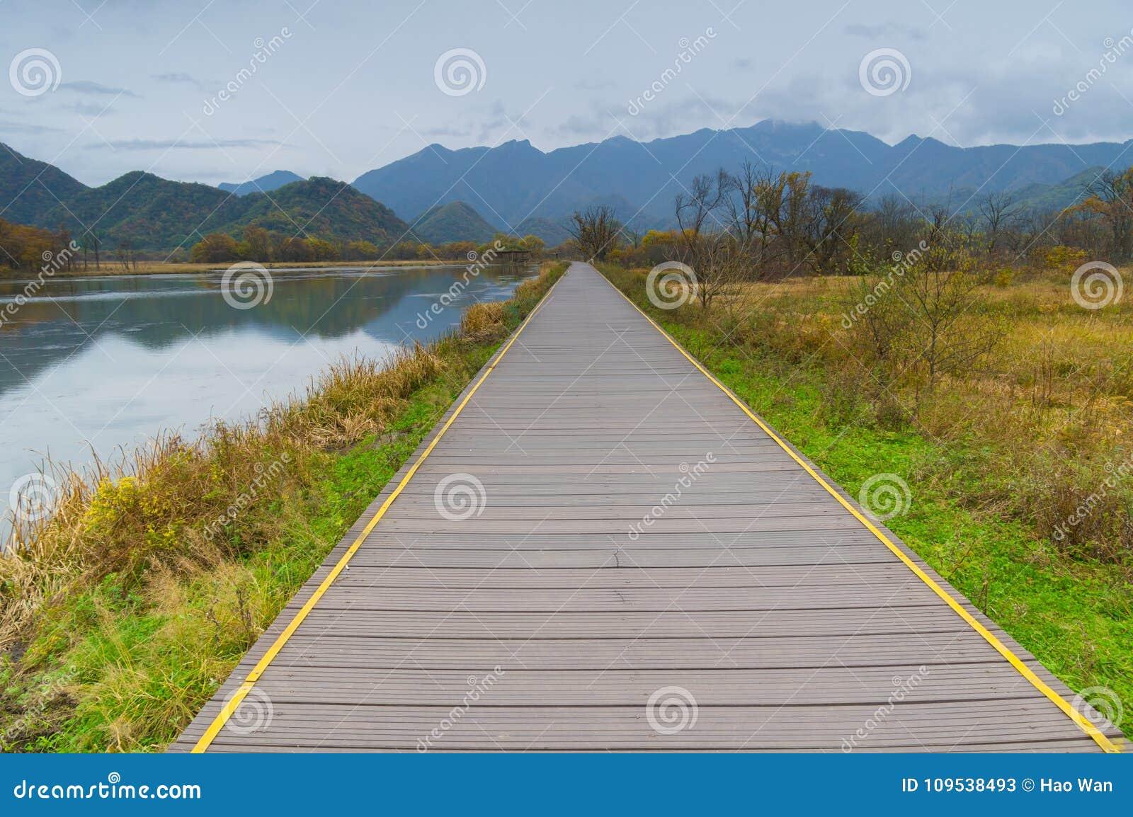 Duzi Dziewięć jezior Hubei Shennongjia las