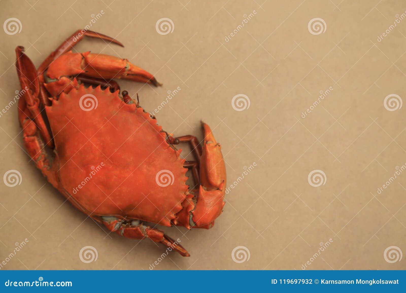 Duzi odparowani kraby na naturalnym brown tle