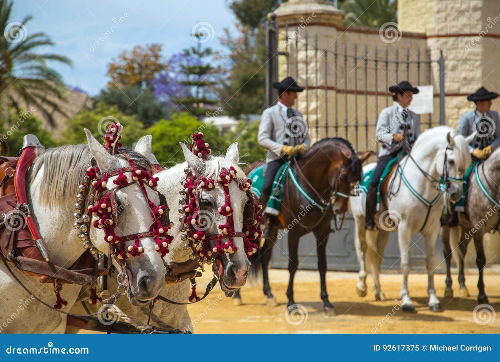 Dwa białego andalusian konia z 3 dżokejami rearRegistrar versià ³ n: