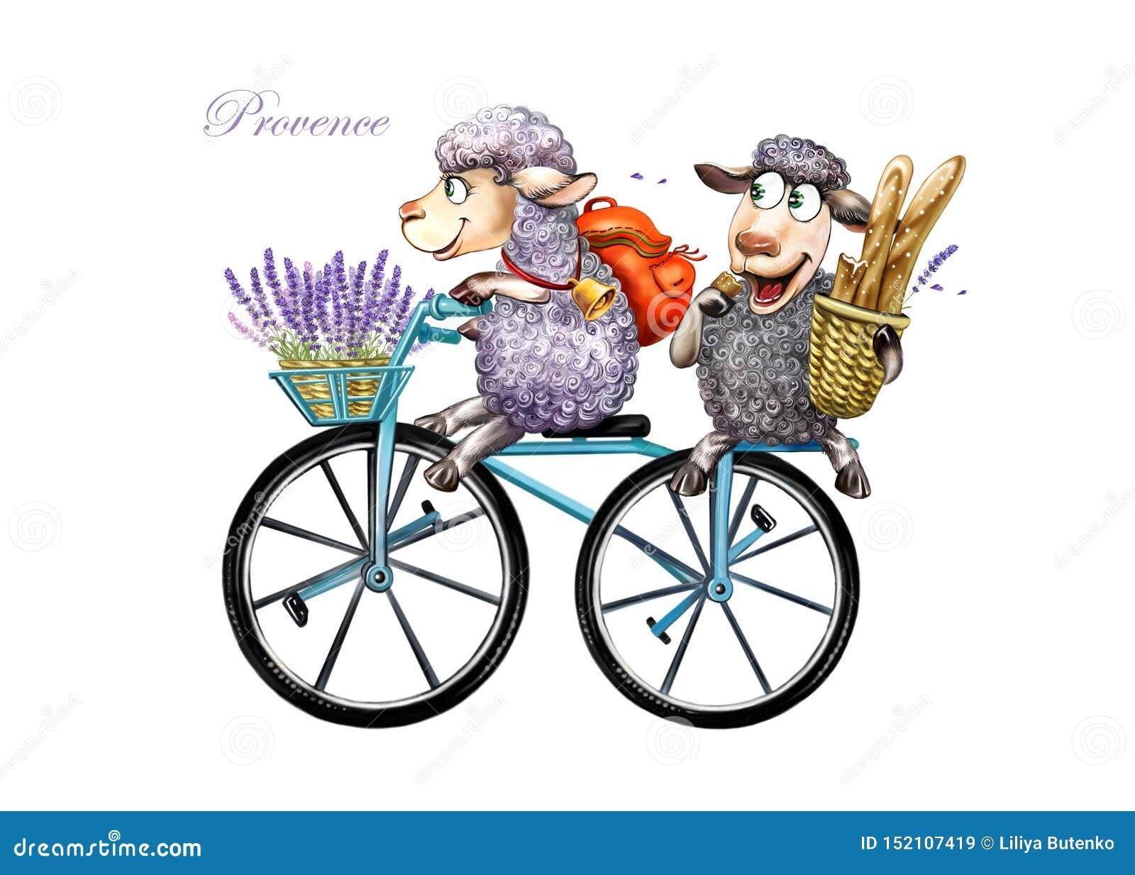 Dwa cakla w Provence