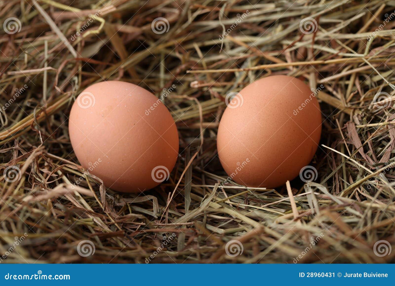 Dwa jajka