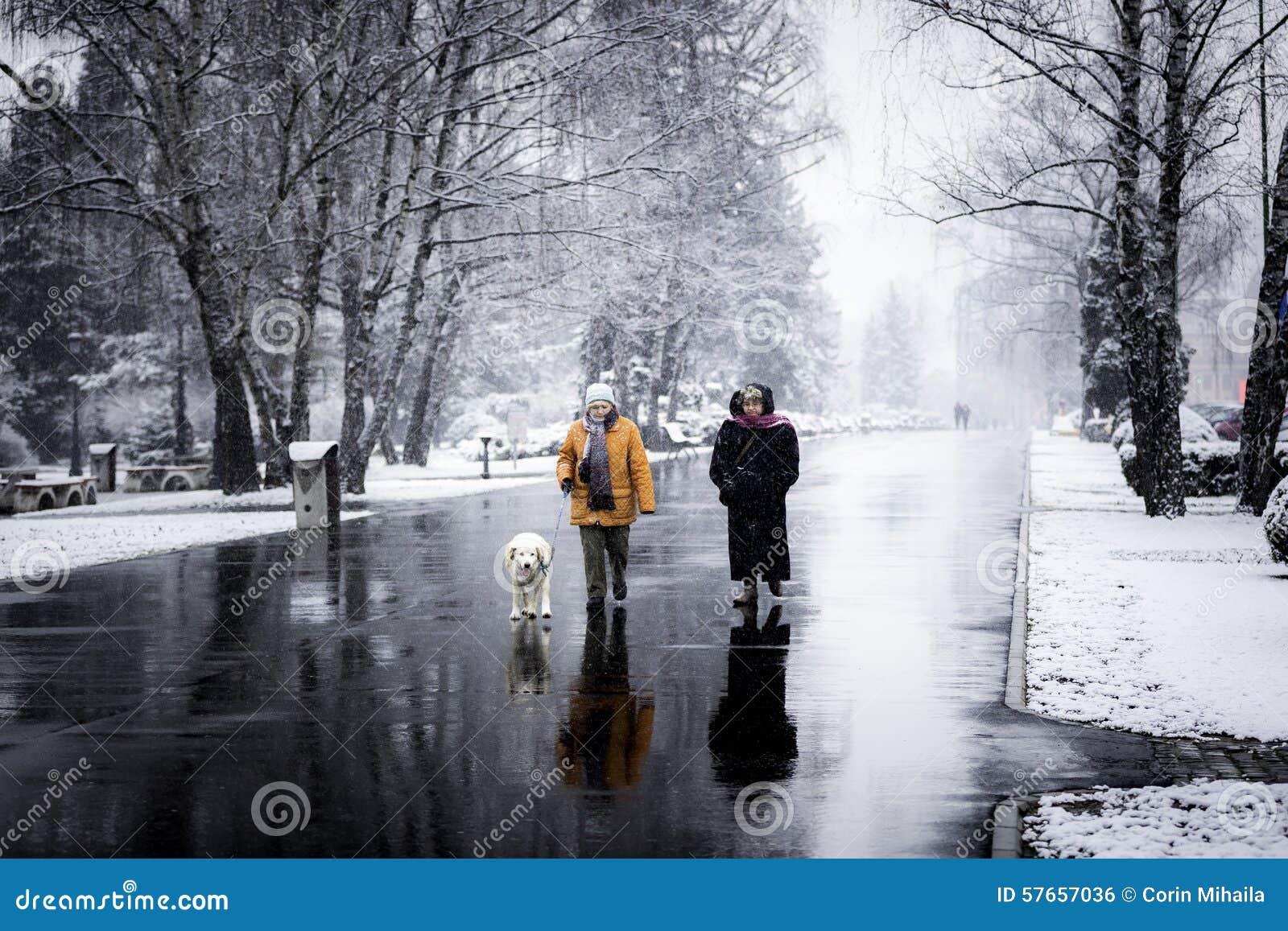 Dwa kobiety chodzi psa w zimie
