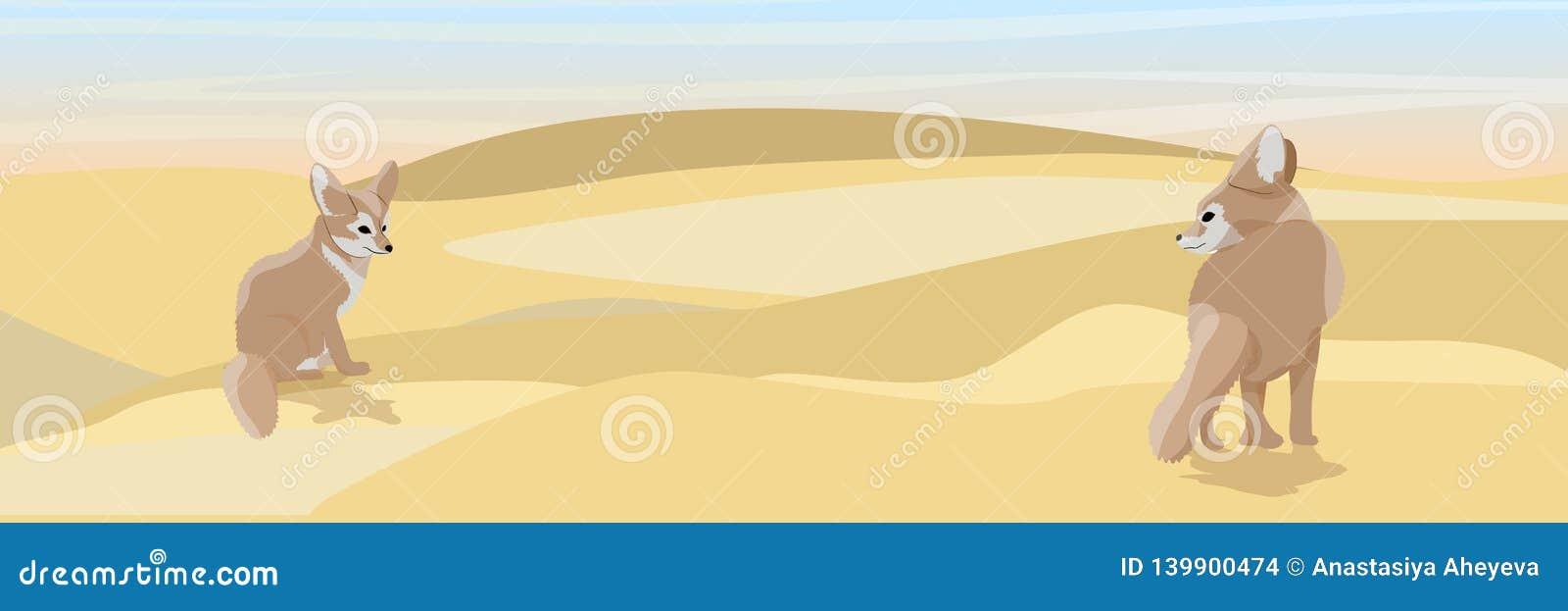 Dwa lisa opustoszały fenek na piasku