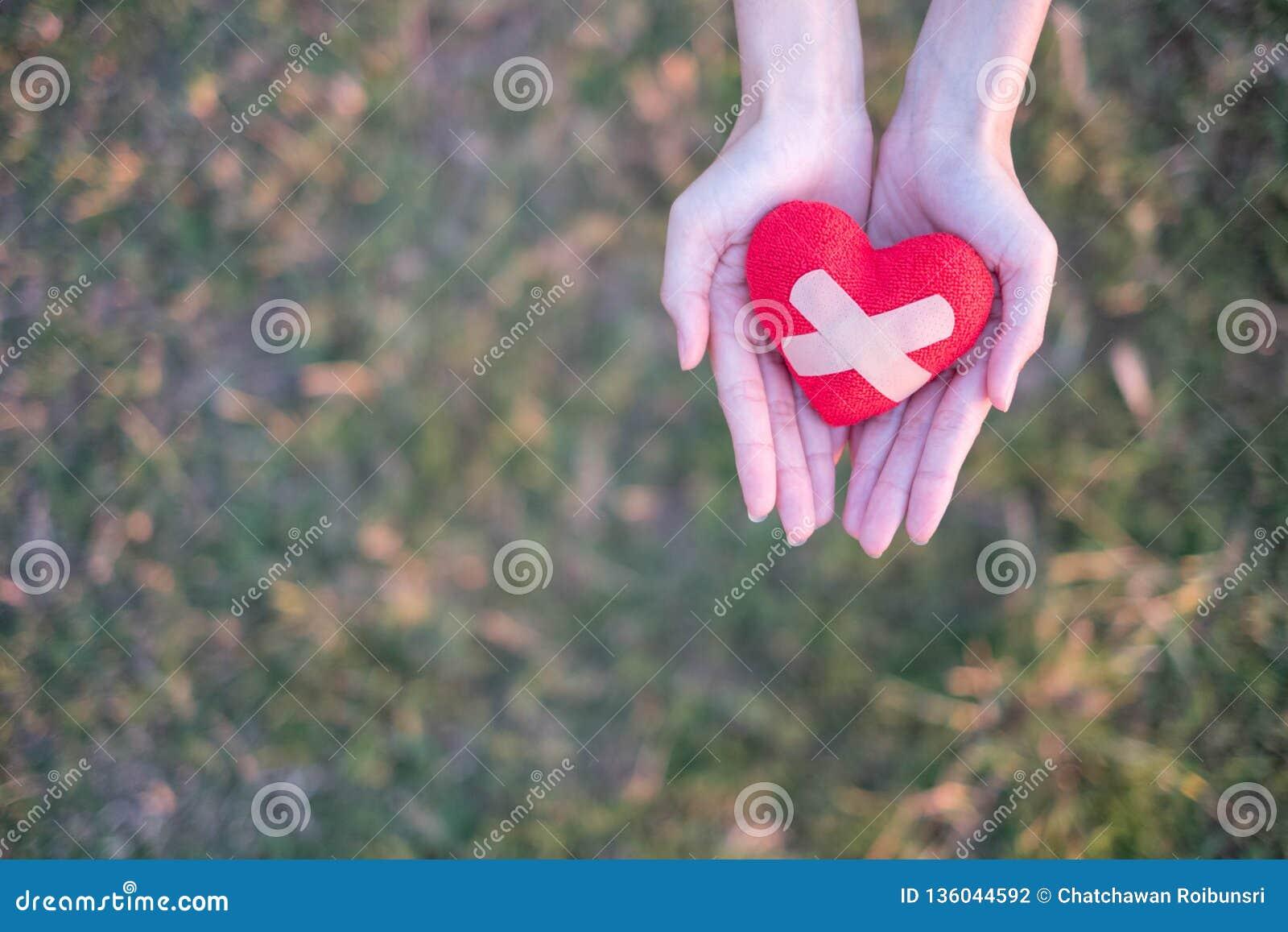 Dwa ręki trzyma czerwonego serce z tynkiem z zielonej trawy tłem Pojęcie Daje miłości