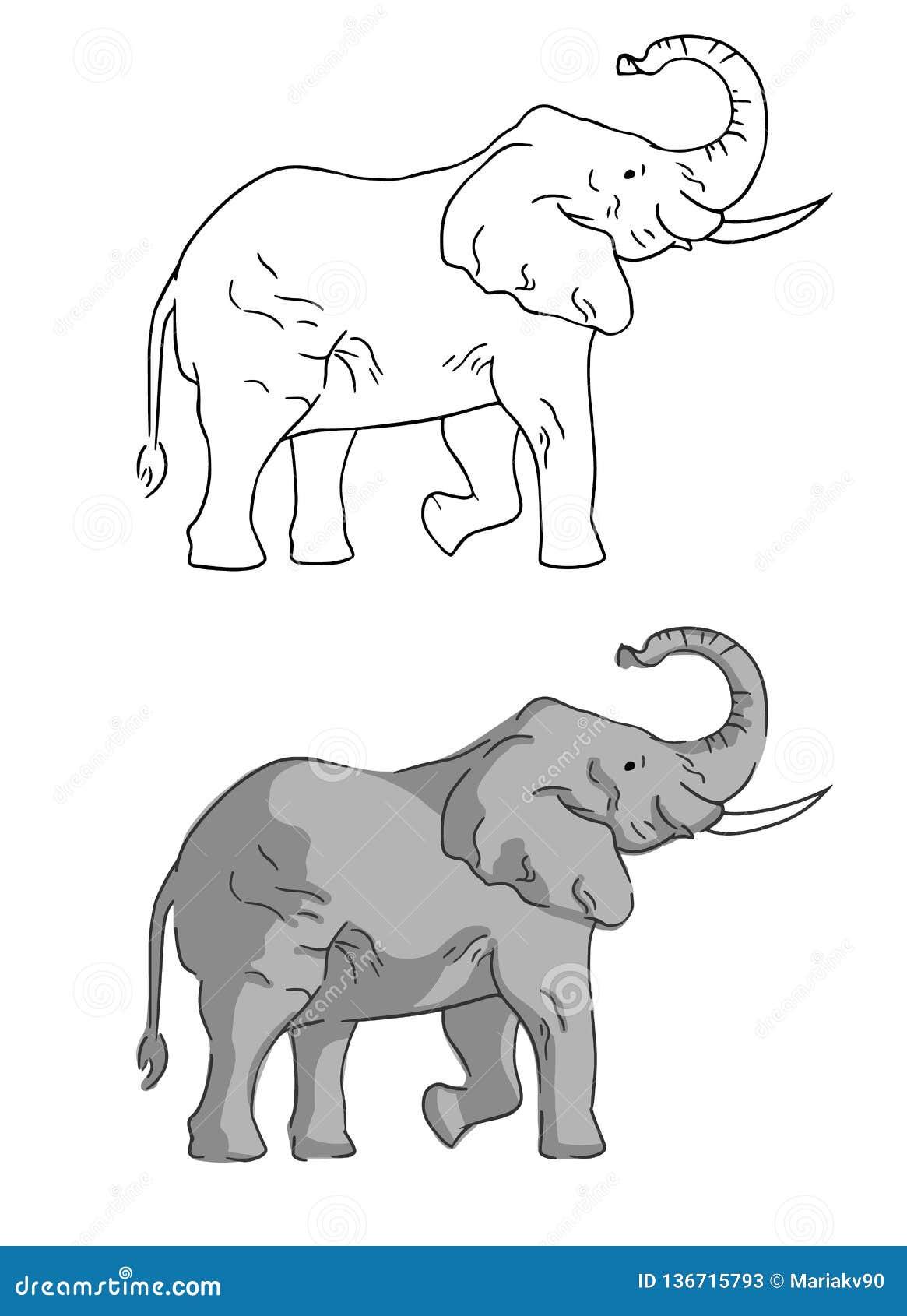 Dwa słonia na białym tle rysującym prostym stylem