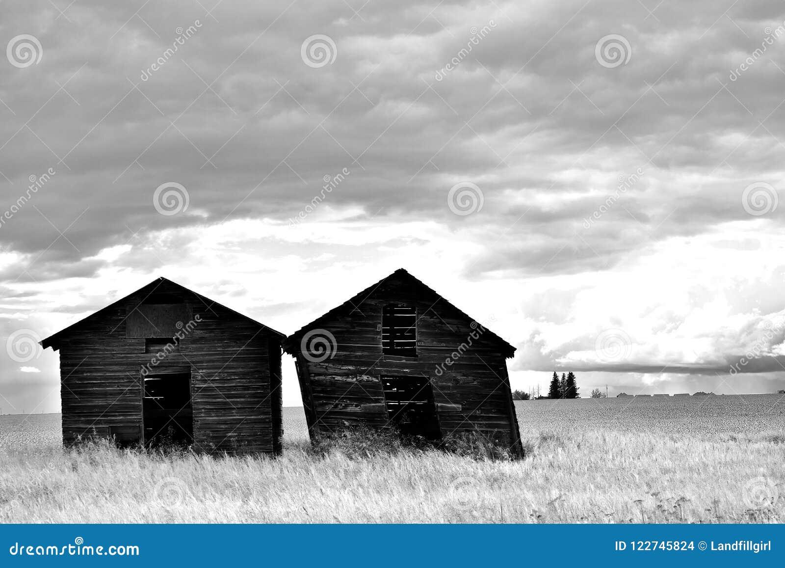 Dwa Starego Drewnianego świronu