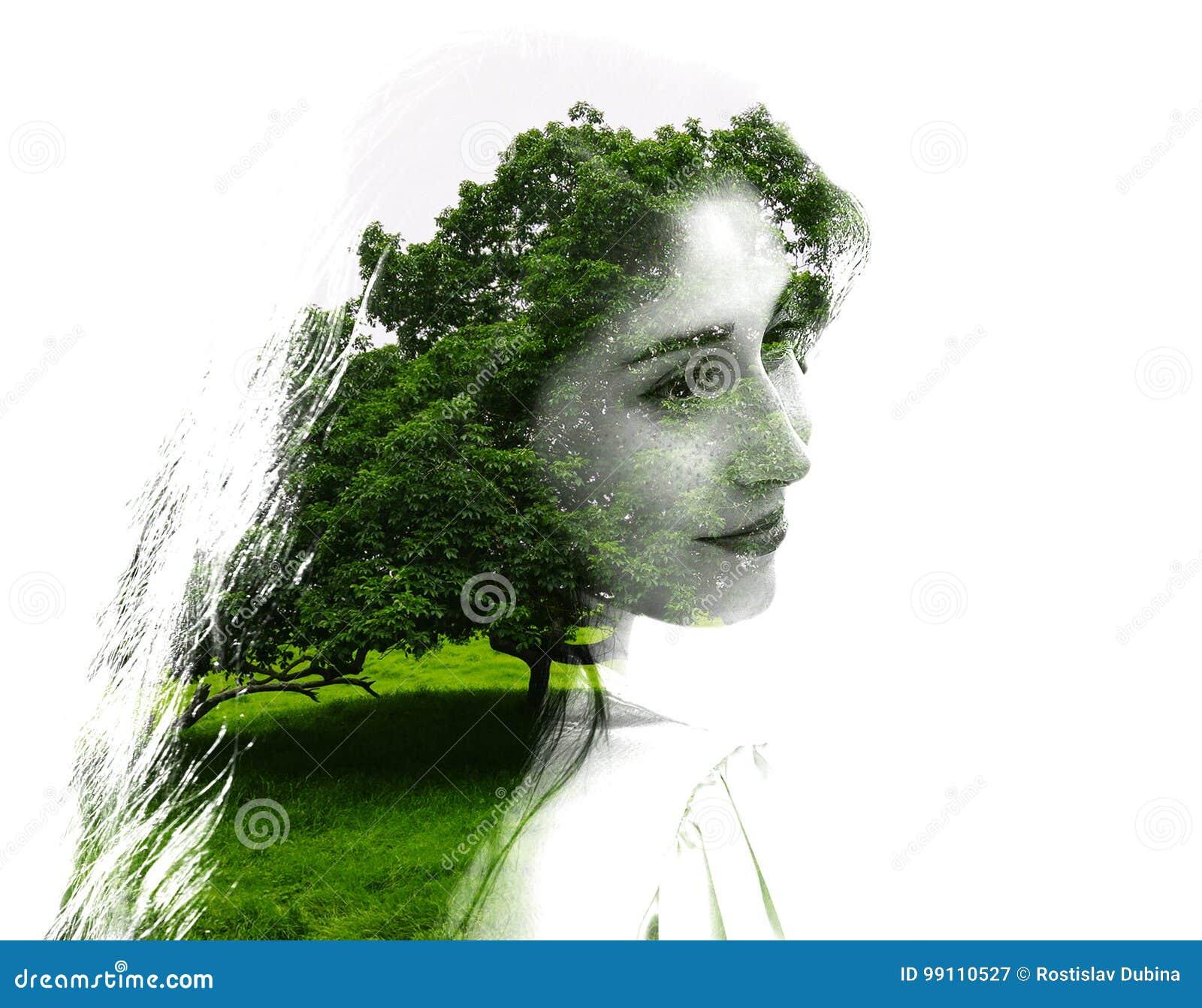 Dwoisty ujawnienie młoda piękna dziewczyna wśród drzew i liści Portret atrakcyjna dama łączył z fotografią drzewo