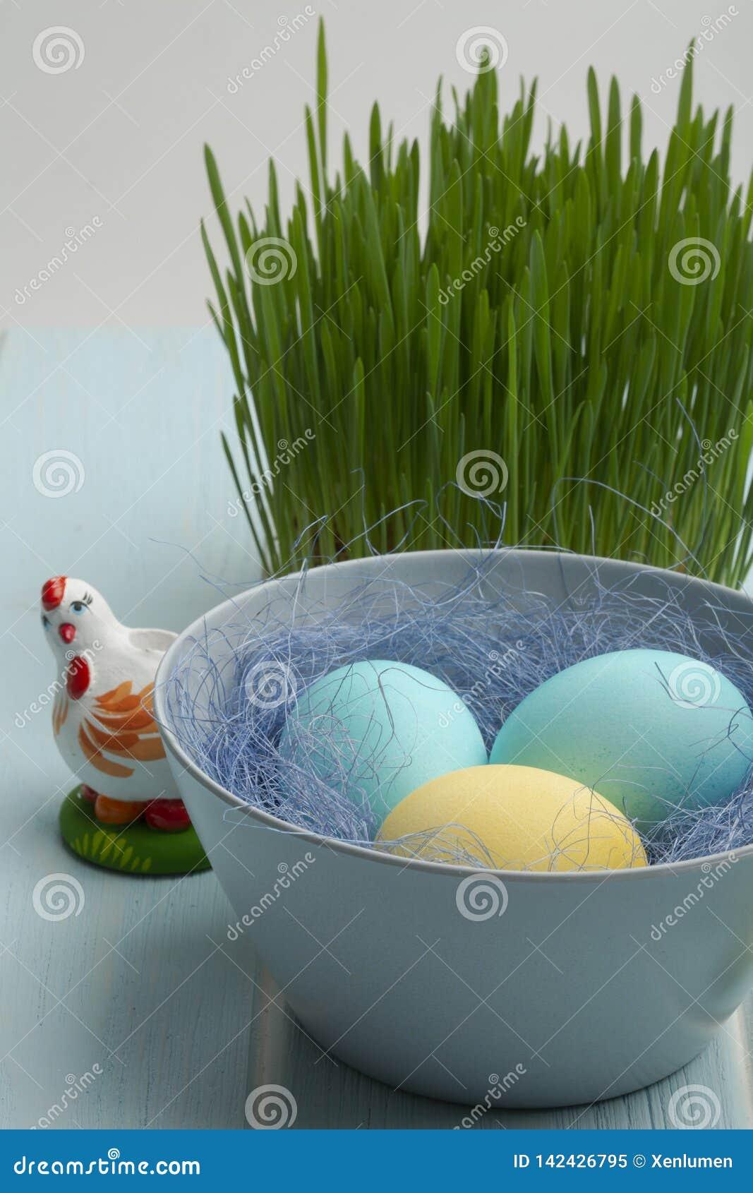 Dyed chiken ovos em uma bacia