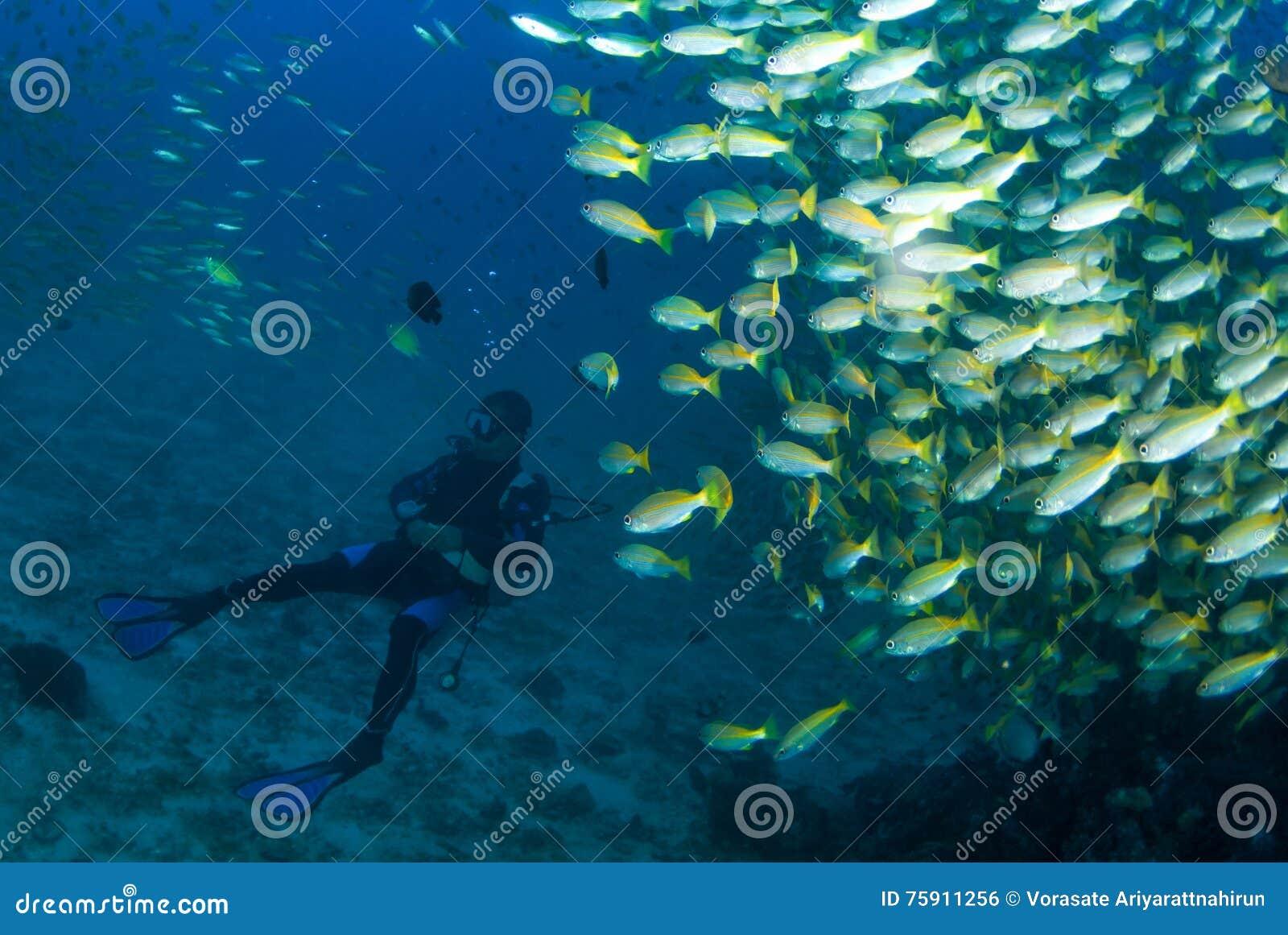 Dykare med fisken