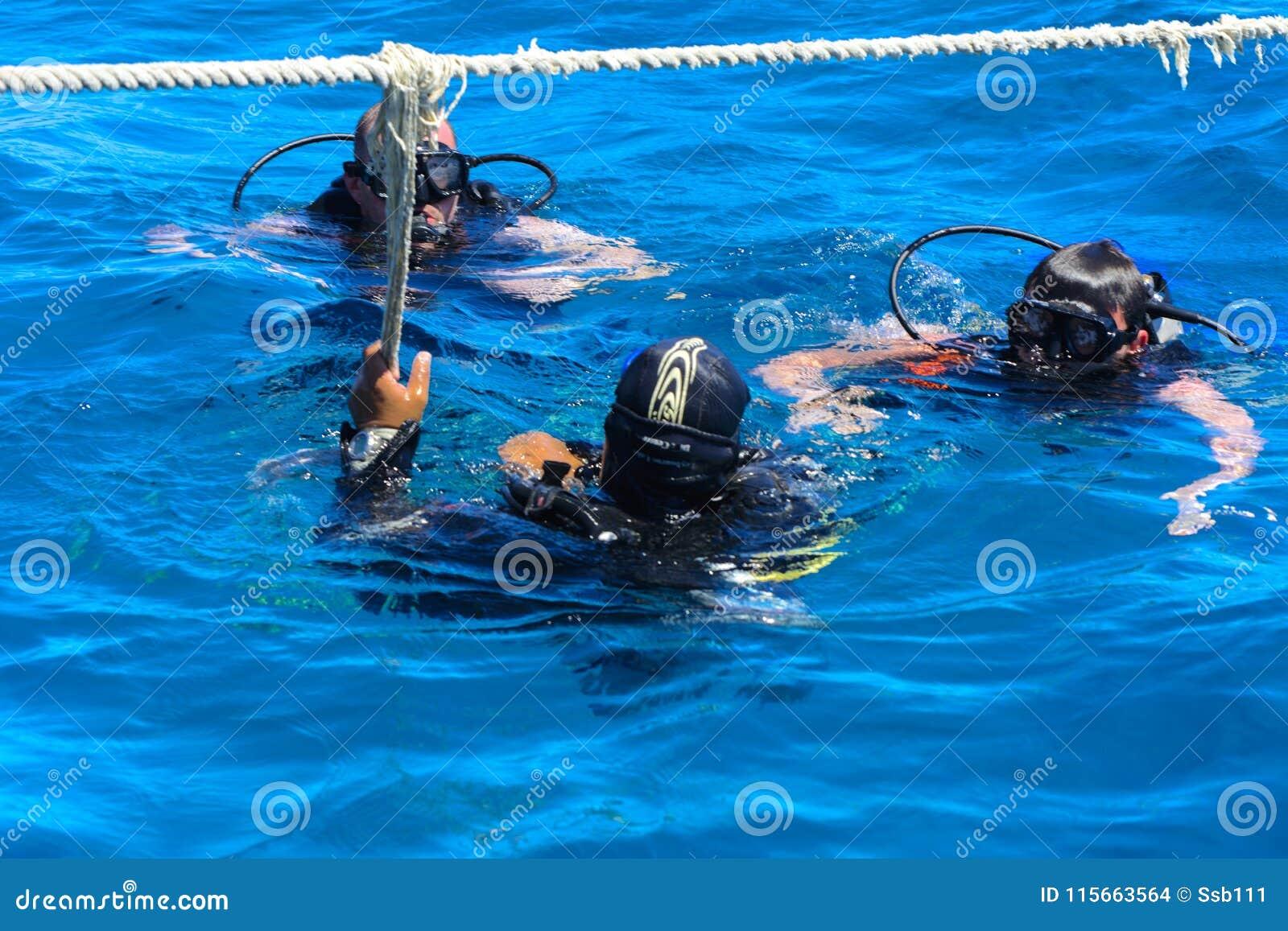 Dykare på det klar och turkosRöda havet på immersion i härliga koraller och färgrik fisk