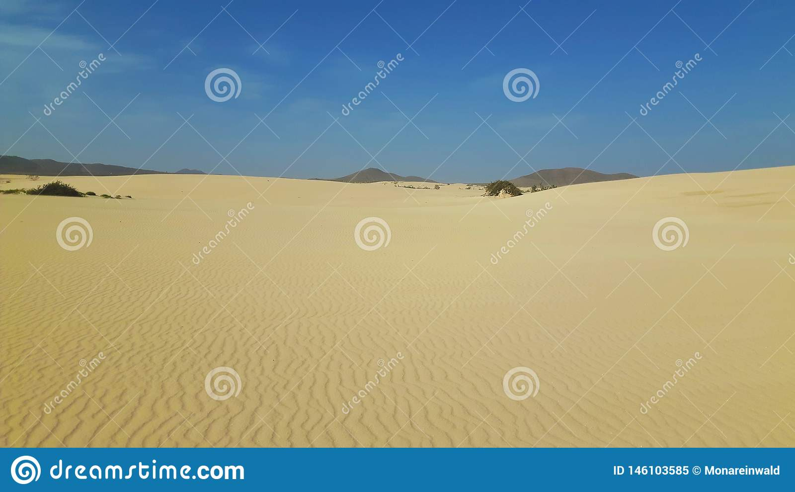 Dyn i Fuerteventura på ferie i vinter