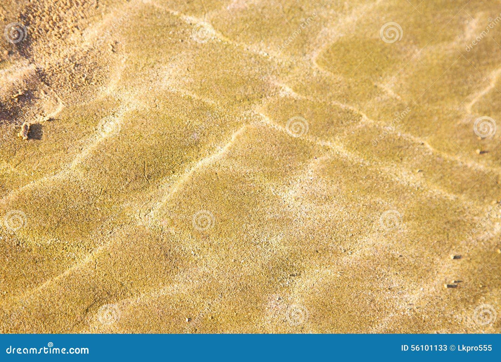Dyn Marocko i den atlantiska africa våta sandstranden