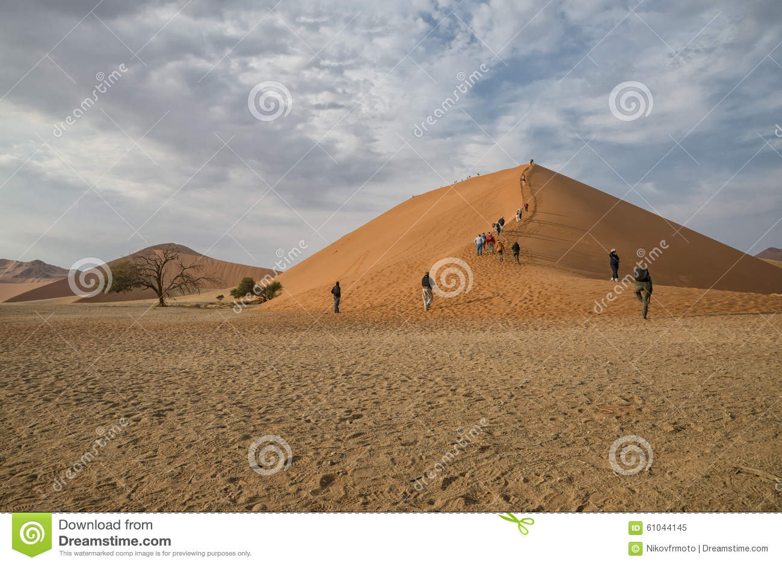 Dyn 45 Namibia