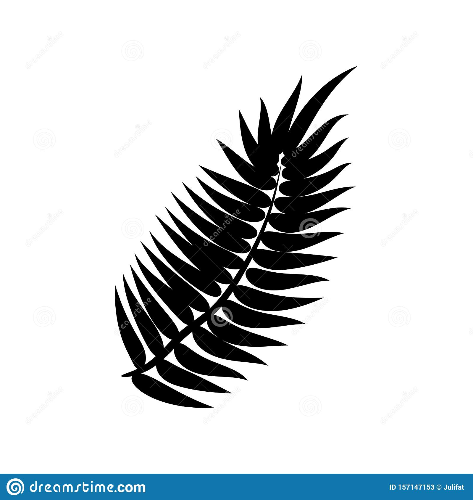Dypsis for decorative design. Isolated sign symbol. Isolated vector illustration. Summer tropical leaf of dypsis. Natural plant