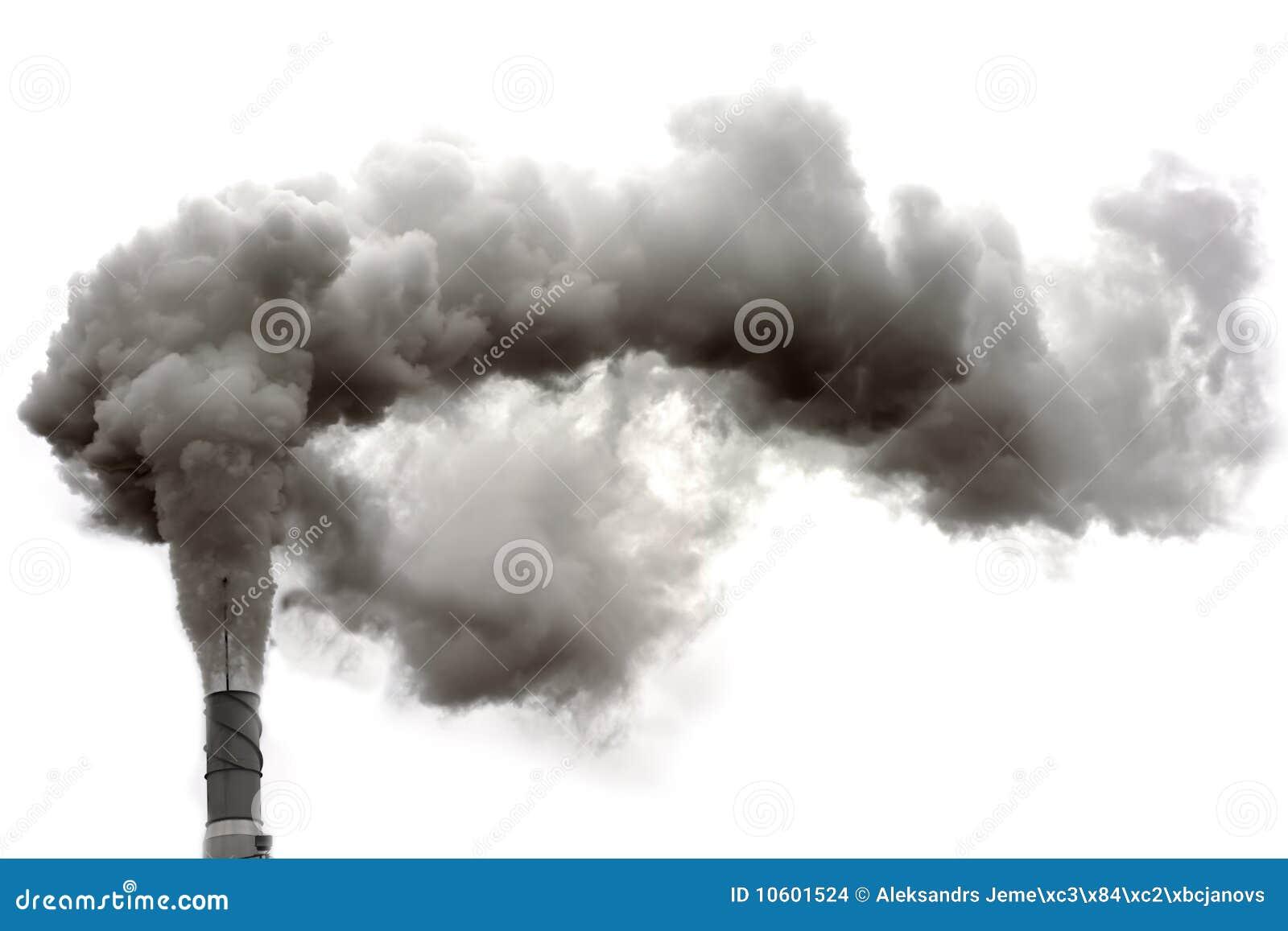 Dyrty Rauch
