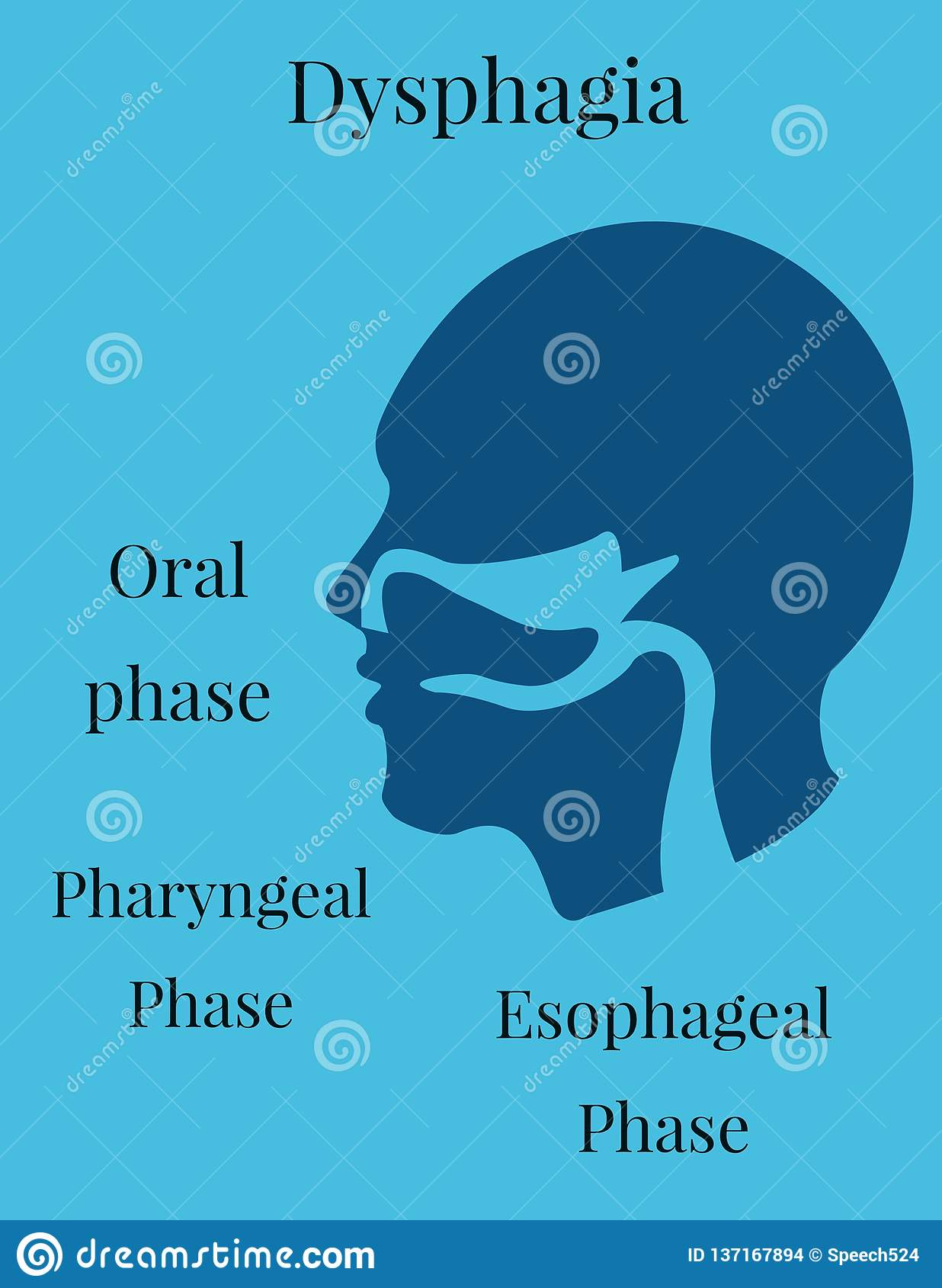 Dysphagia And Speech Therapy Stock Illustration ...