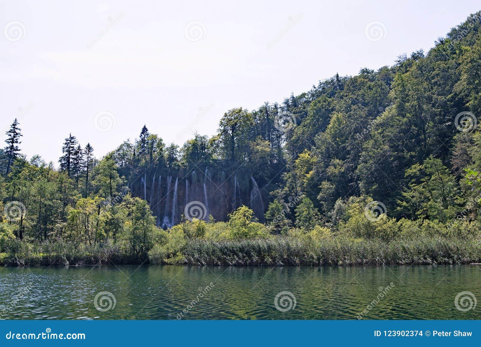 Dystansowy widok wielka siklawa za shrubbery, w Plitvice jezior parku narodowym w Chorwacja,