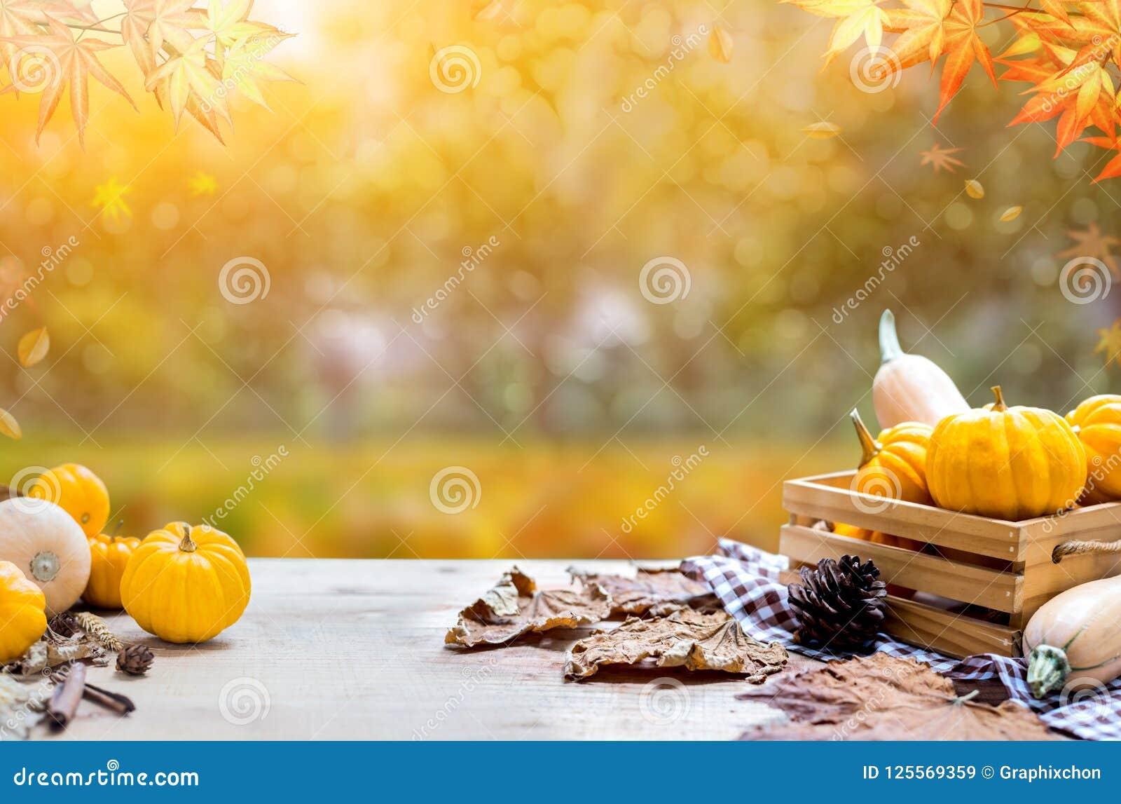 Dziękczynienia tło w jesieni i spadku