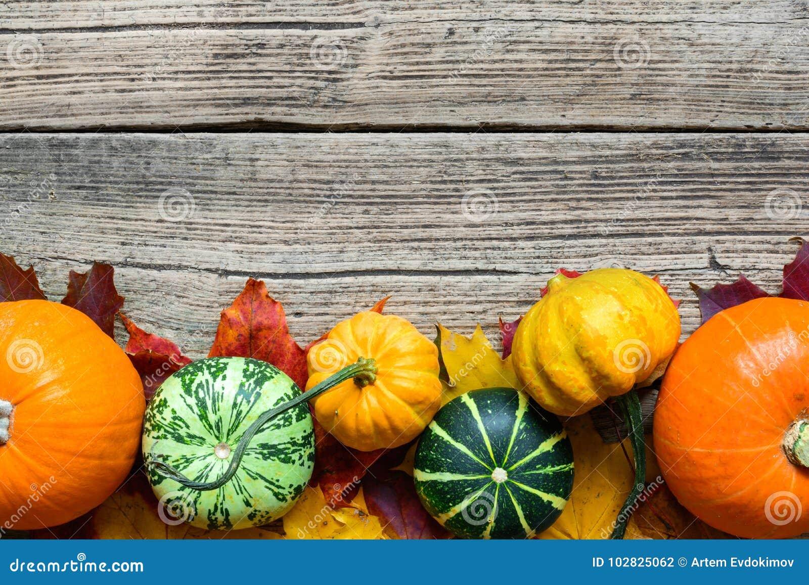 Dziękczynienie jesieni spadku tło z baniami, jabłkami, dokrętkami i liśćmi klonowymi zbierającymi,