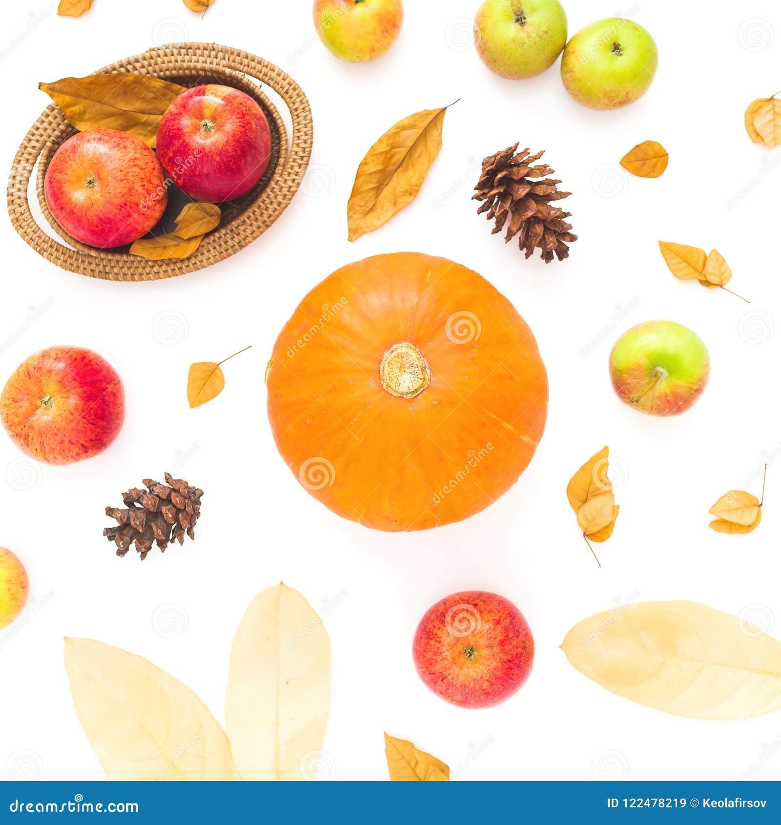 Dziękczynienie jesieni tło robić spadki suszący liście, sosnowi rożki, jabłka i bania, na białym tle Mieszkanie nieatutowy, odgór