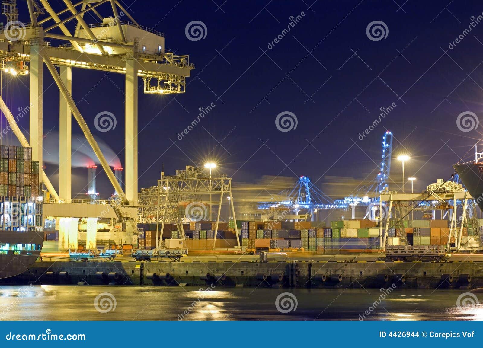 Działalność portu