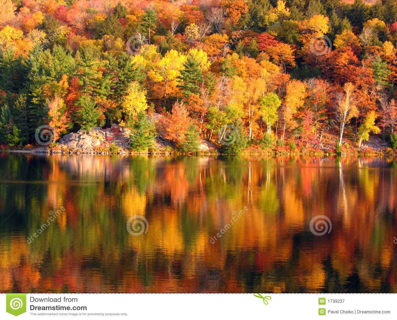 Dzień dobry lake
