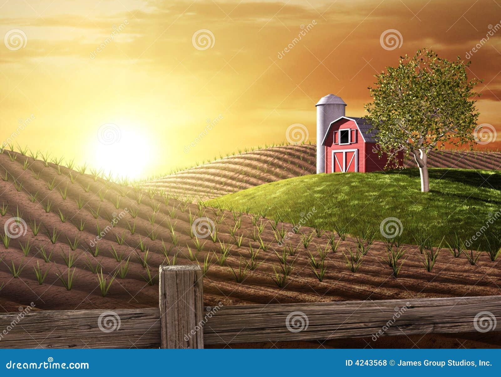 Dzień dobry z gospodarstw rolnych