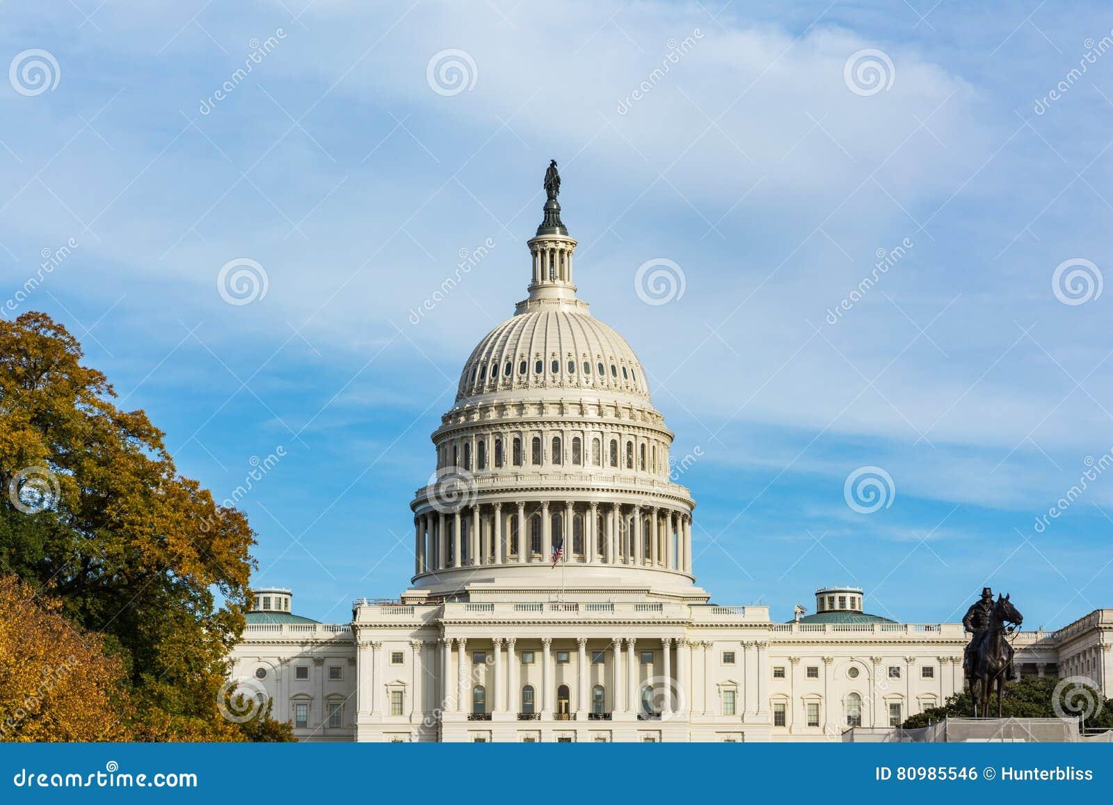 Dzień USA Capitol budynku washington dc Krajobrazowa trawa Błękitny S