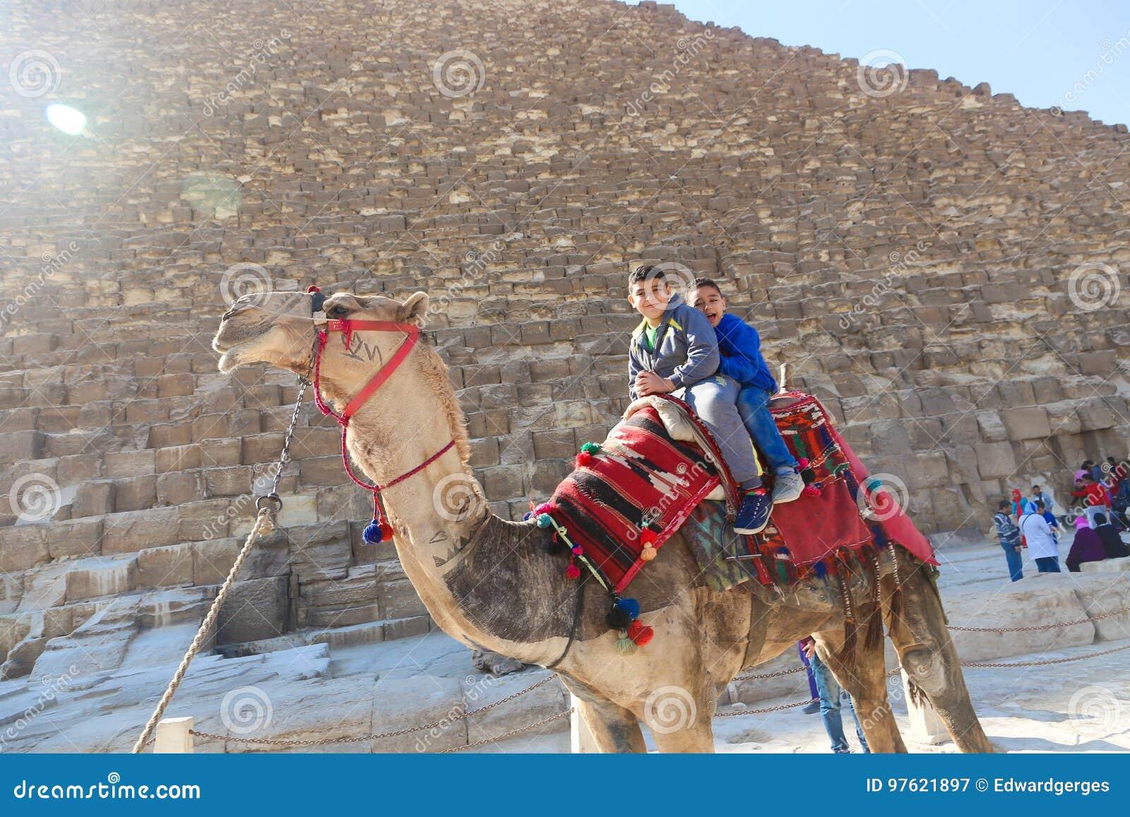 Dzieciaki na wielbłądzie w Giza ostrosłupach