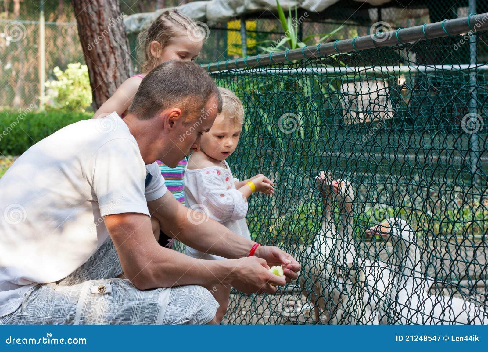 Dziecka żywieniowy gąsek zoo