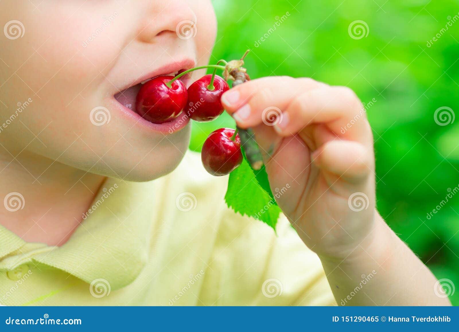 Dziecko je wiśnie zdrowa ?ywno?? Owoc w ogr?dzie Witaminy dla dzieci Natura i żniwo