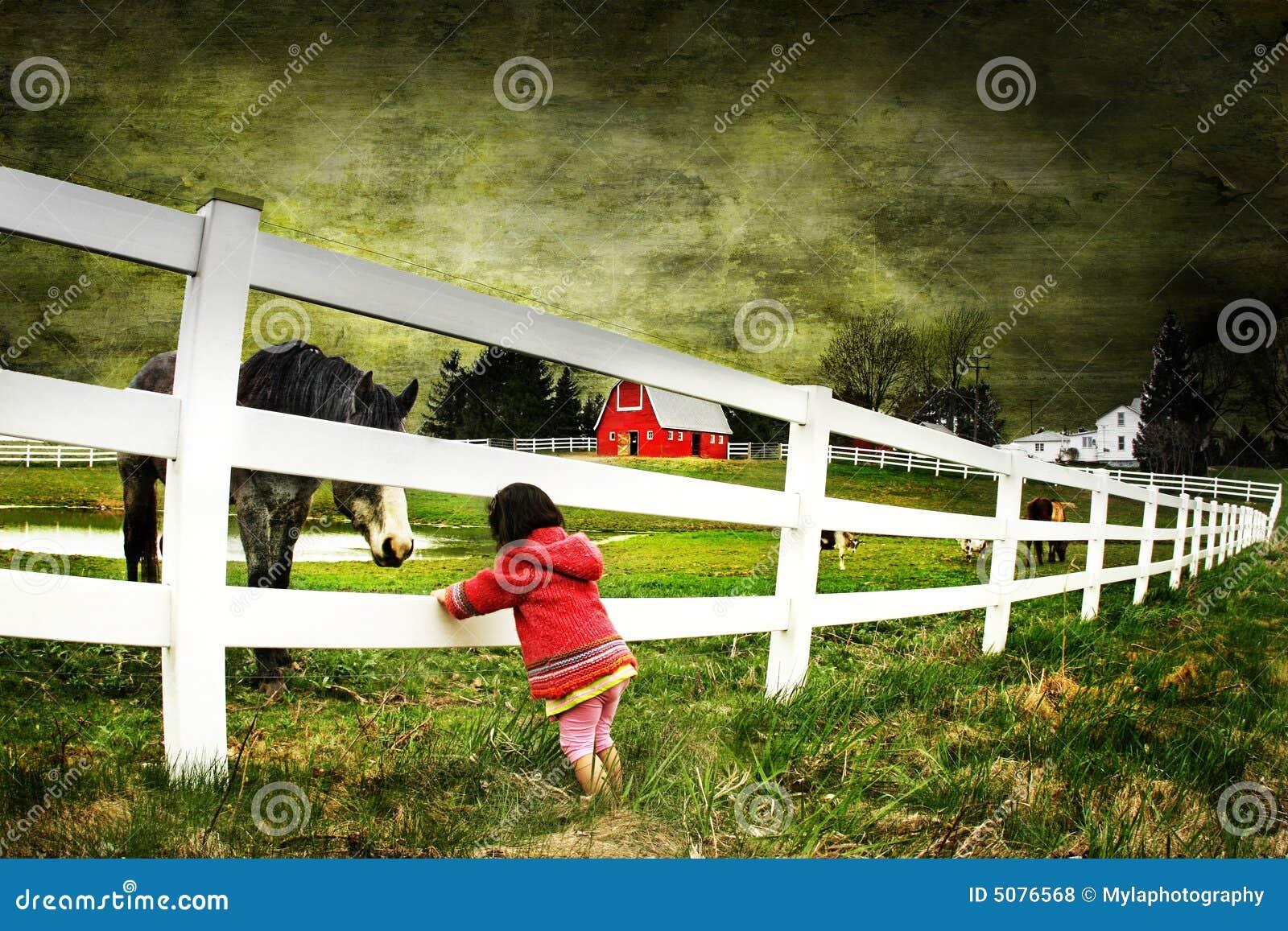 Dziecko konia konsystencja