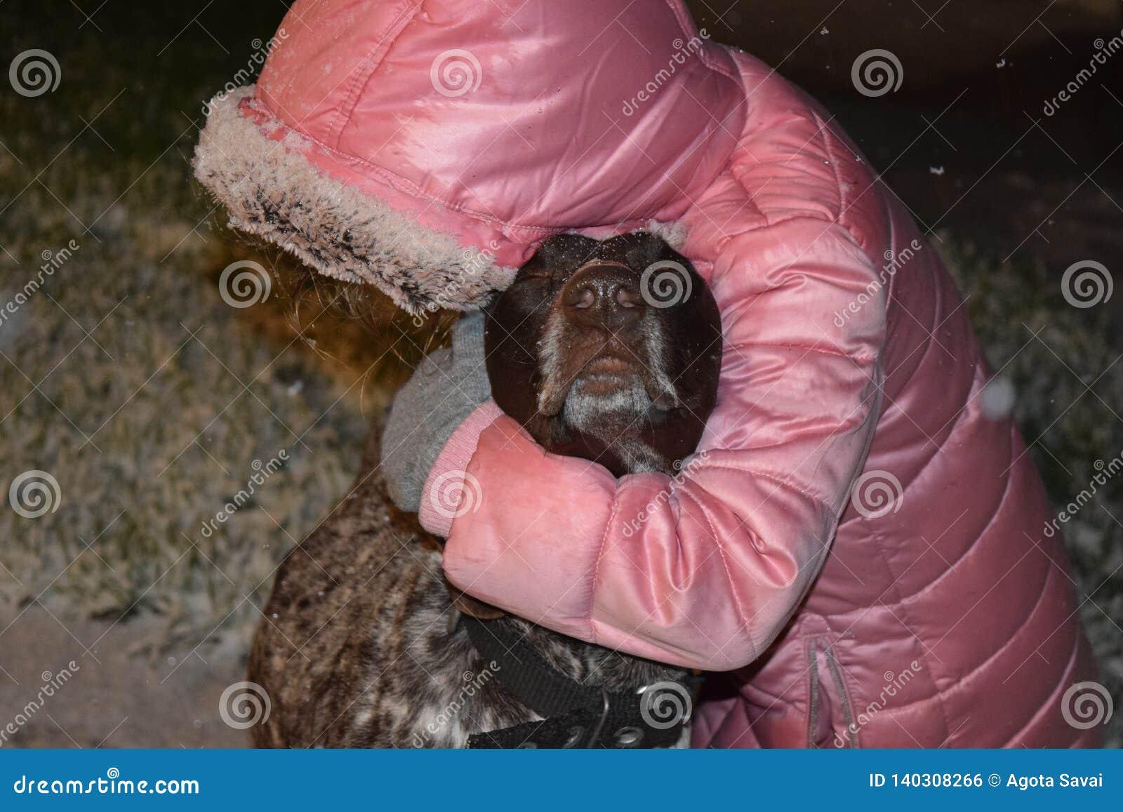 Dziewczyna bawić się z brązu shorthaired pointeru niemieckim psem, zima śnieg Piękno, ssak