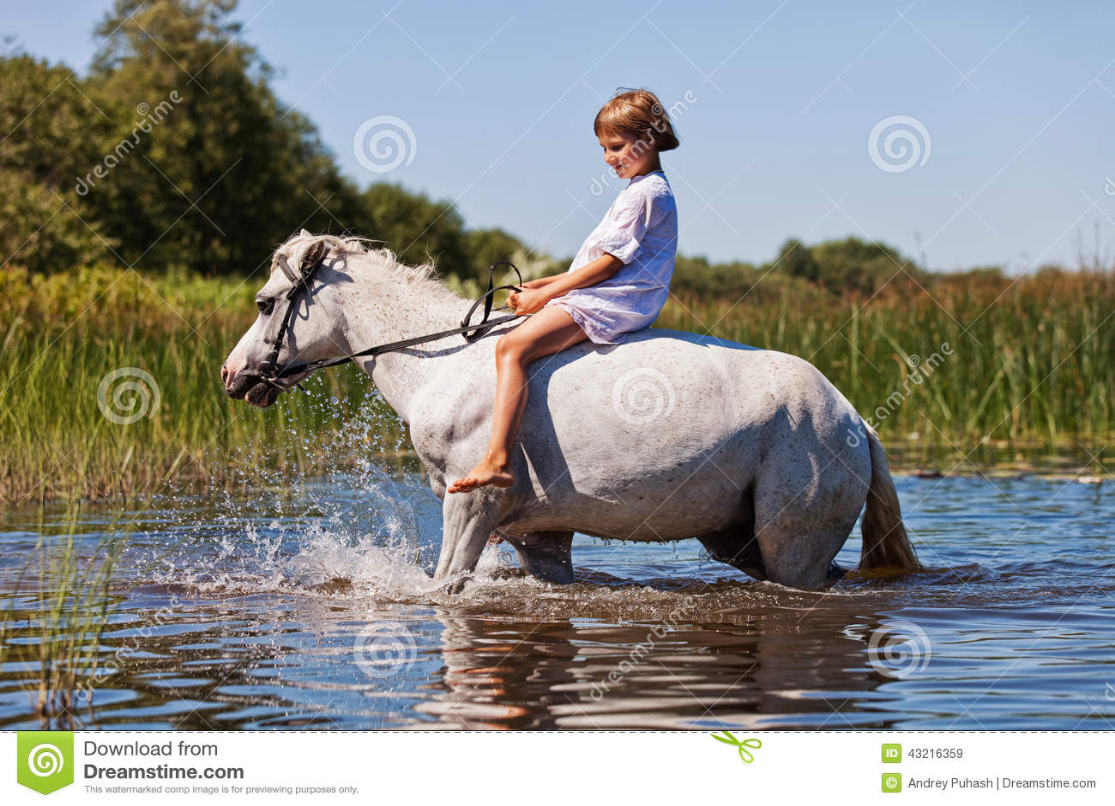 https://thumbs.dreamstime.com/z/dziewczyna-jedzie-konia-w-rzece-43216359.jpg