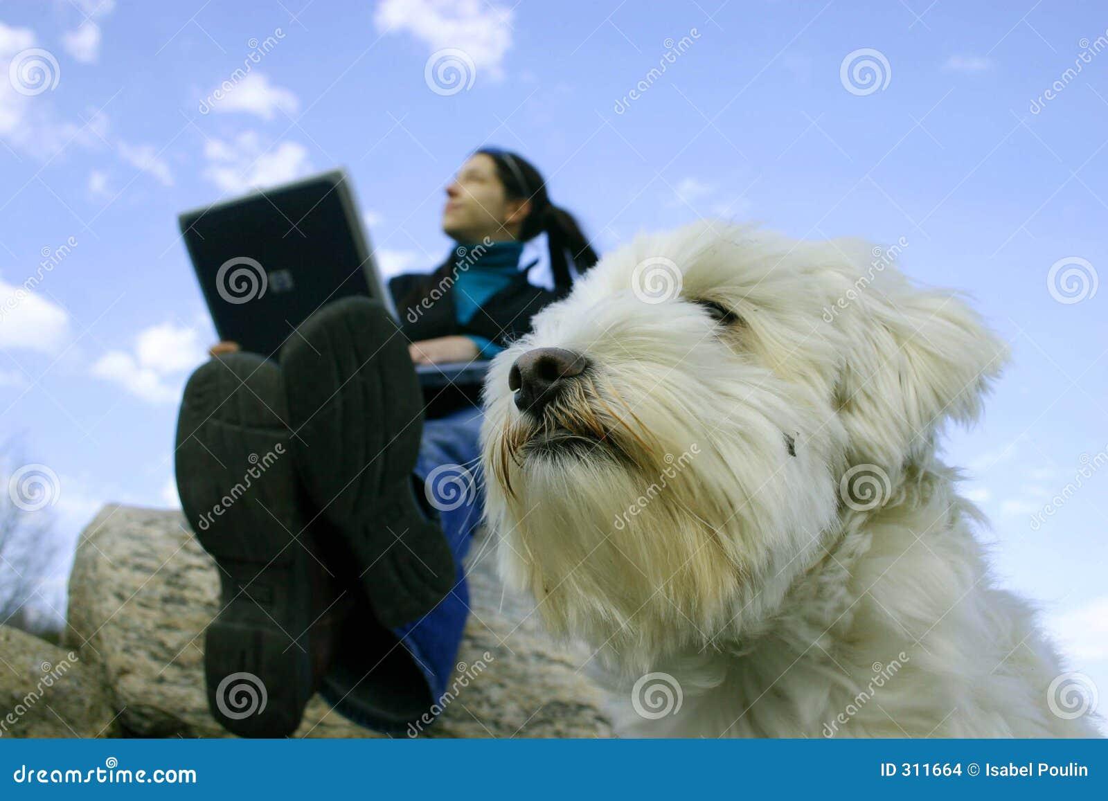 Dziewczyna laptop