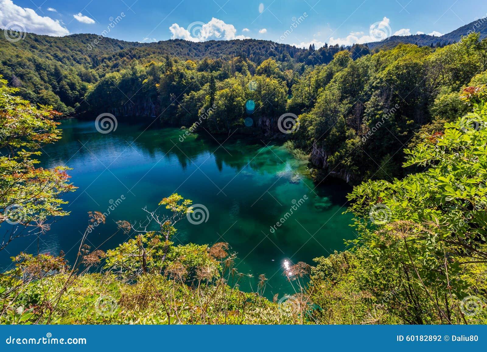 Dziewicza natura Plitvice jeziora parki narodowi, Chorwacja