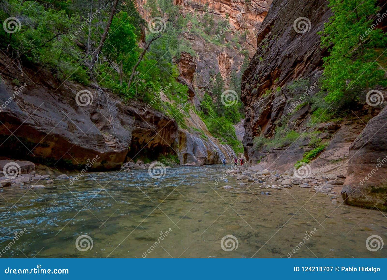 Dziewicza rzeka w Zion parku narodowym lokalizować w Południowo-zachodni Stany Zjednoczone i przesmyki, blisko Springdale, Utah