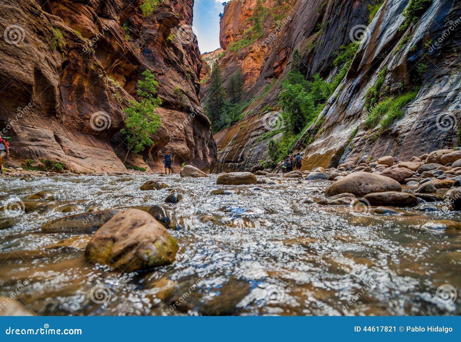 Dziewicza rzeka w zion parku narodowym Utah