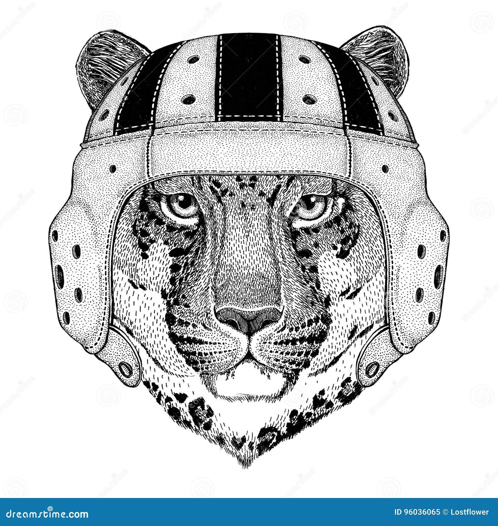 Dziki kota lamparta kota ` - halny pantery dzikie zwierzę jest ubranym rugby hełma sporta ilustrację