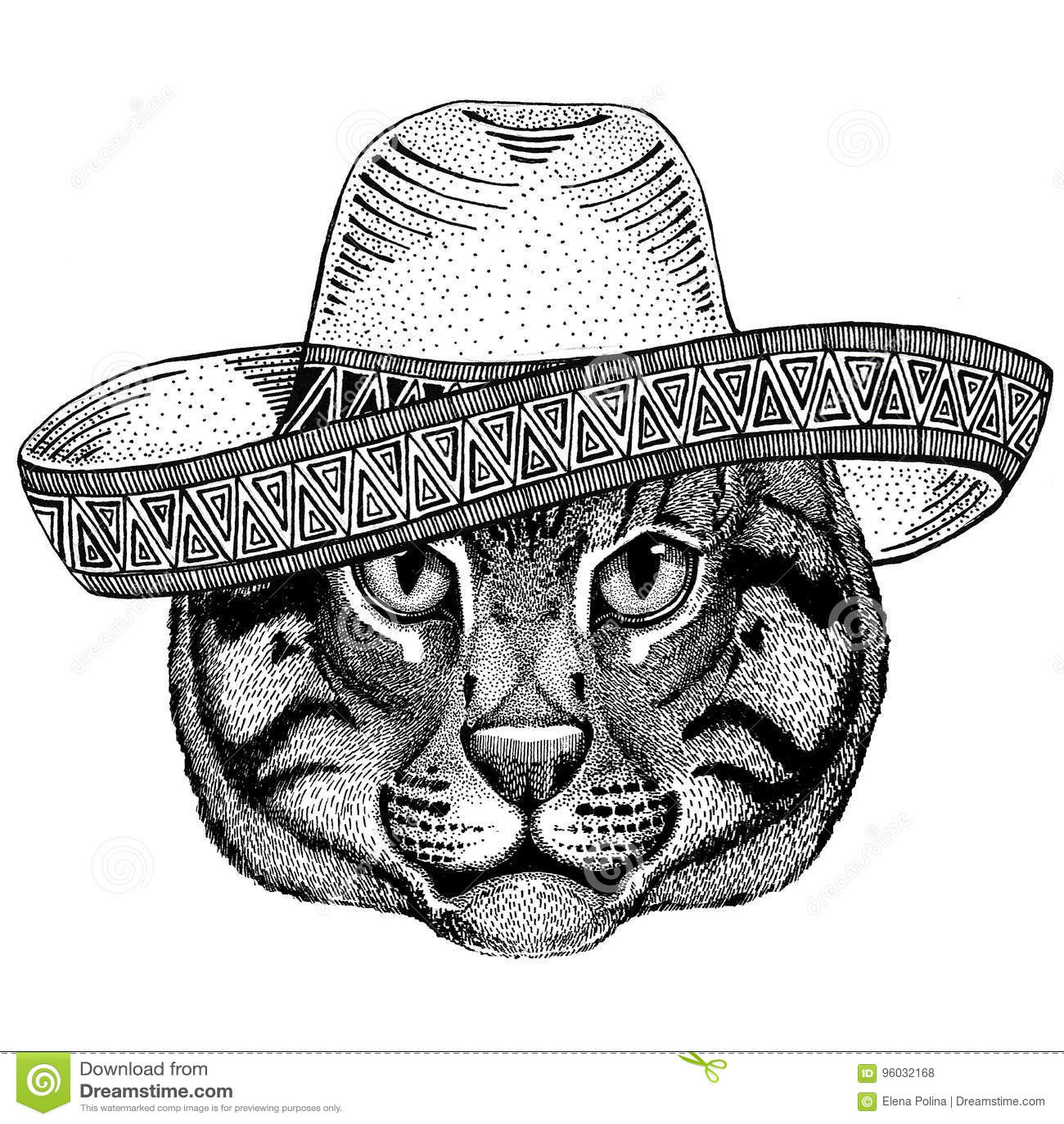 Dziki kota połowu kota dzikie zwierzę jest ubranym sombrero Meksyk fiesta meksykanina przyjęcia ilustracyjnego Dzikiego zachód