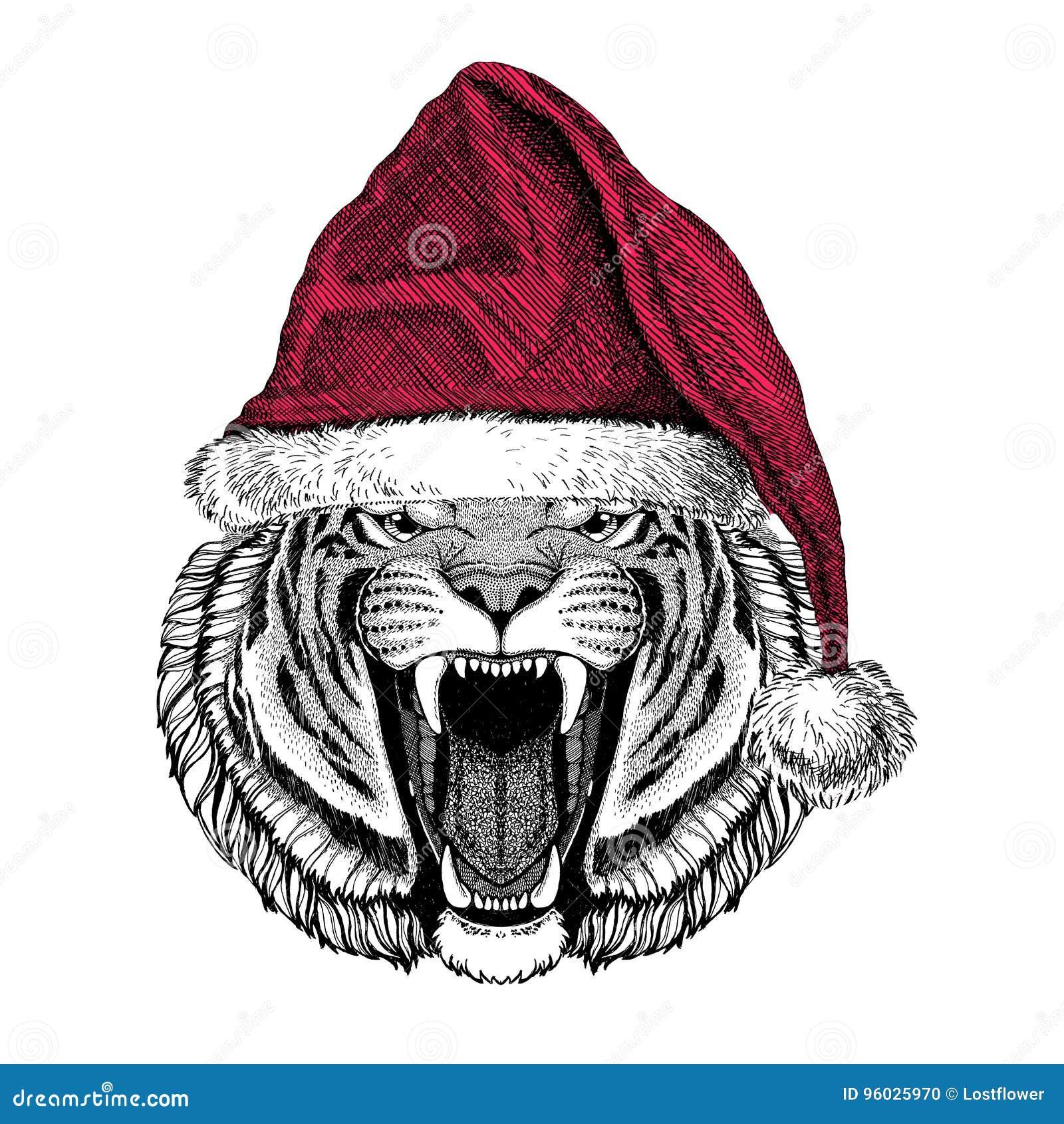 Dziki tygrysi Bożenarodzeniowy ilustracyjny dzikie zwierzę jest ubranym bożego narodzenia Santa Claus zimy kapeluszowego Czerwone