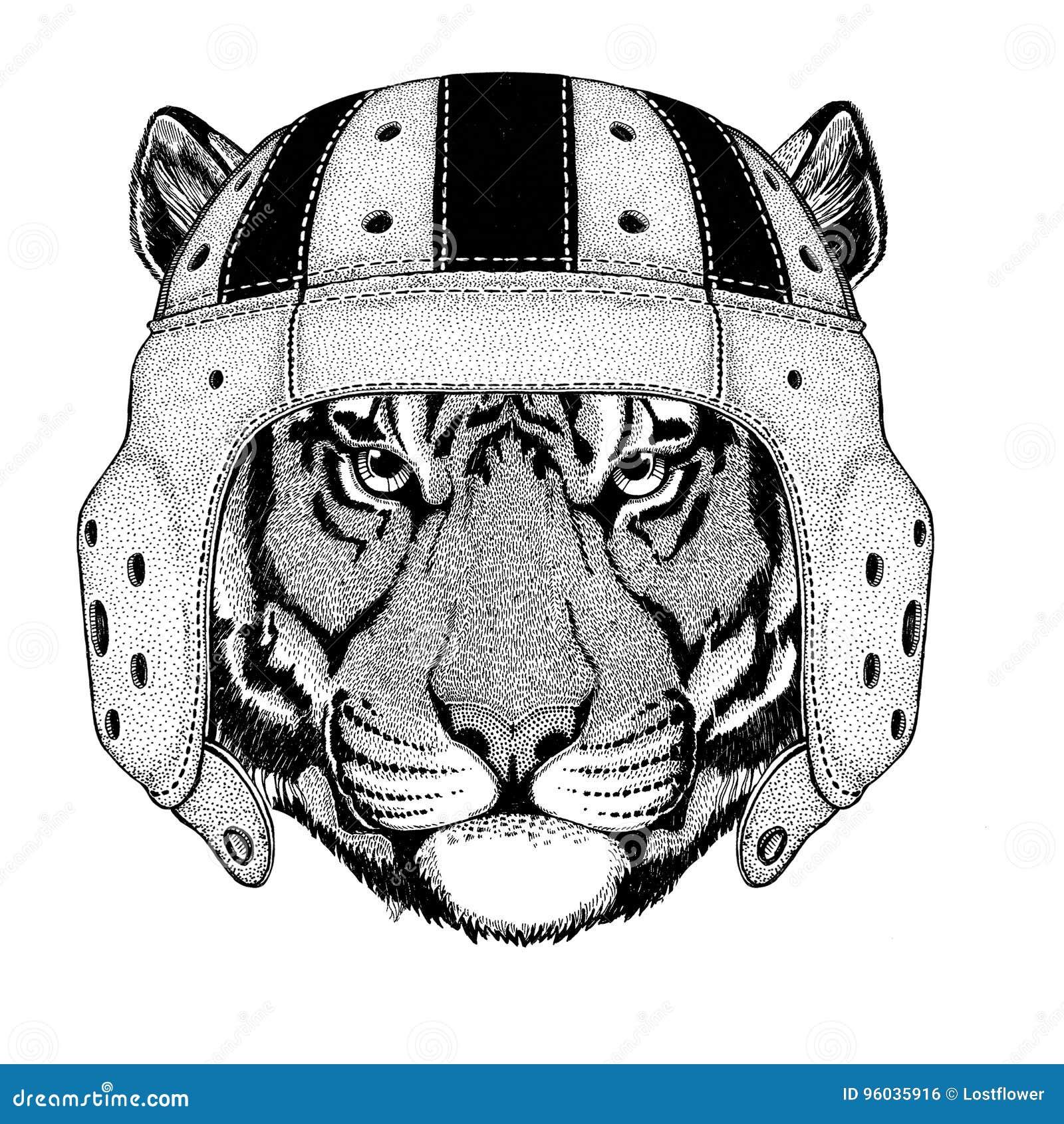 Dziki tygrysi dzikie zwierzę jest ubranym rugby hełma sporta ilustrację