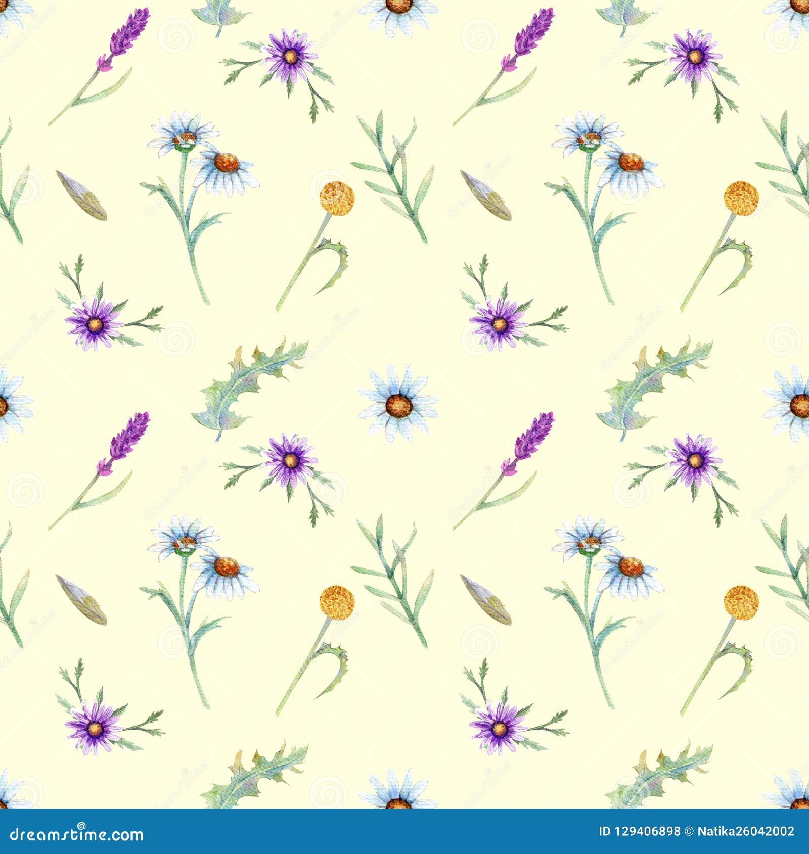 Dzikich kwiatów tło