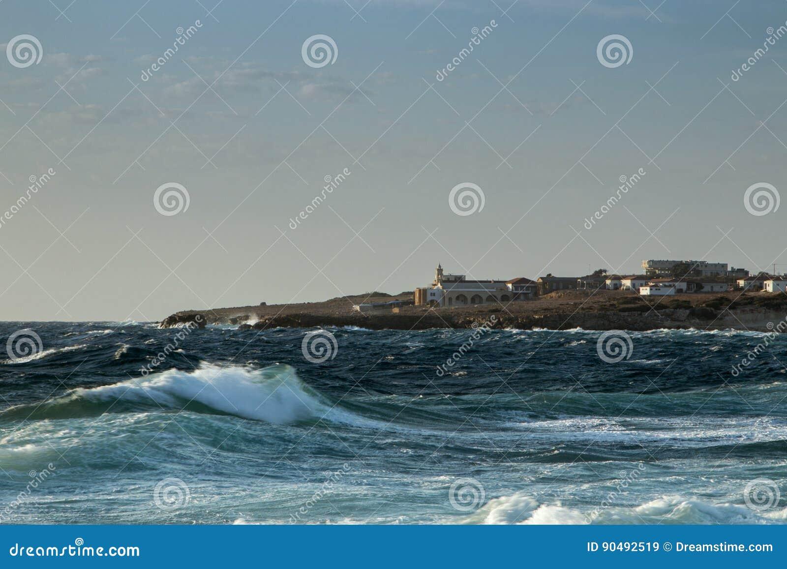 Dzikie morze fala