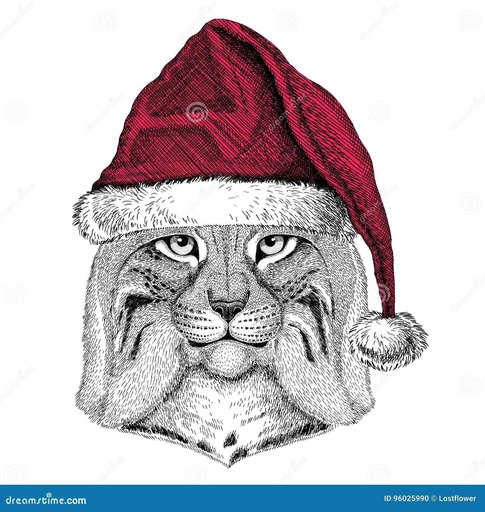 Dzikiego kota rysia rysia rudy bryka Bożenarodzeniowy ilustracyjny dzikie zwierzę jest ubranym bożego narodzenia Santa Claus zimy