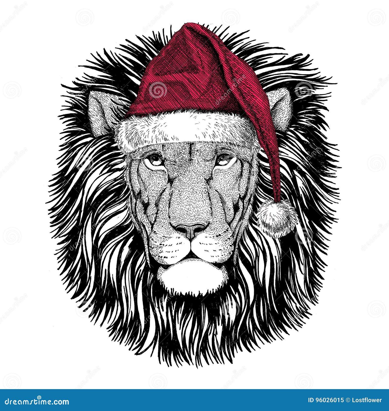 Dzikiego lwa Bożenarodzeniowy ilustracyjny dzikie zwierzę jest ubranym bożego narodzenia Santa Claus zimy kapeluszowego Czerwoneg